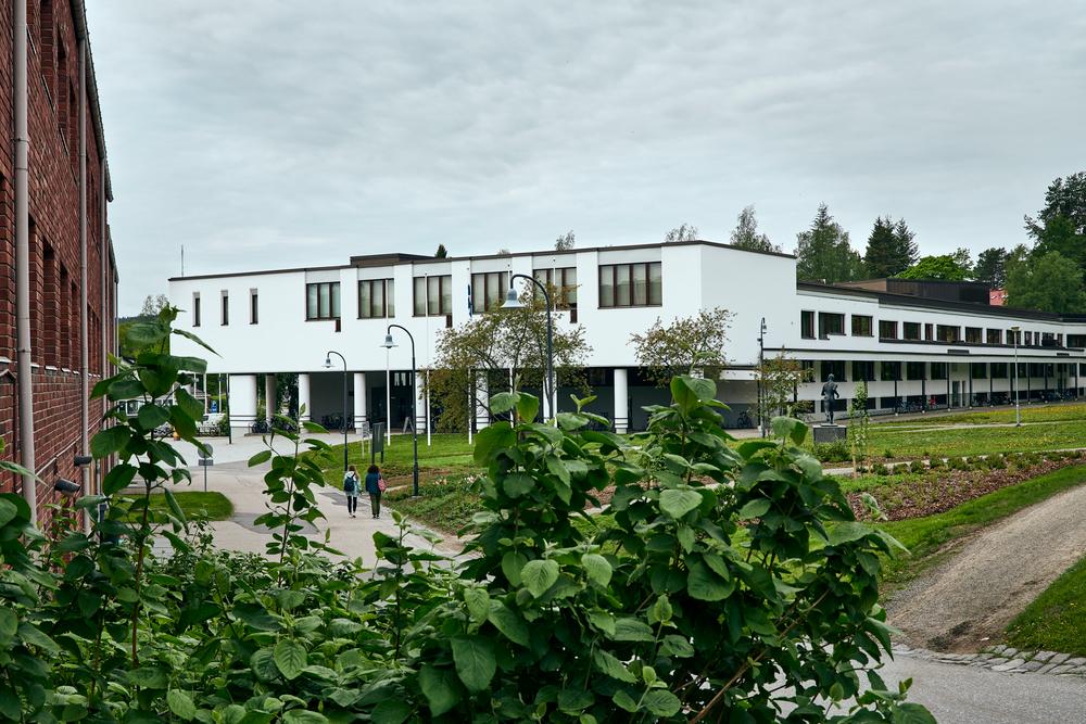 Jyväskylän yliopiston liikuntatieteellinen. Valkoinen rakennus.